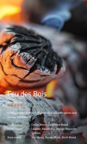 Feu des Bois Aromaöl 200 ml