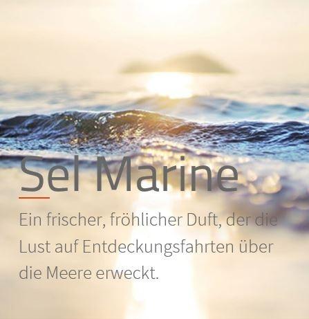 Sel Marine Raumduft Aromaöl 200 ml