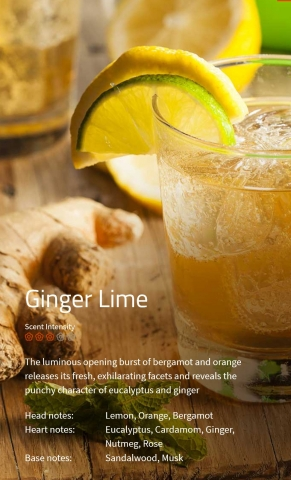 Ginger Lime Duftmarketing Aromaöl 200 ml