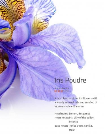Iris Poudre Duftmarketing Aromaöl 200 ml