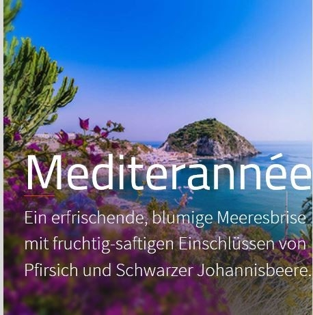 Mediterranée Duftmarketing Aromaöl 200 ml