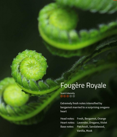 Fougere Royale Aromaöl 200 ml