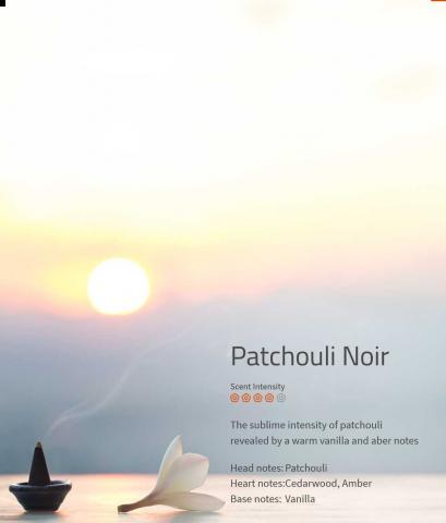 Patchouli Noir Duftmarketing Aromaöl 200 ml