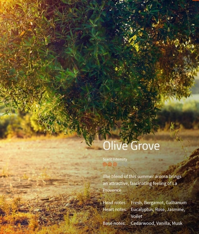 Olive Grove Aromaöl 200 ml