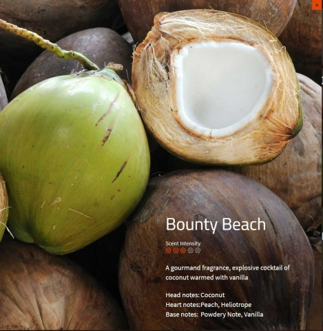 Bounty Beach Aromaöl 200 ml