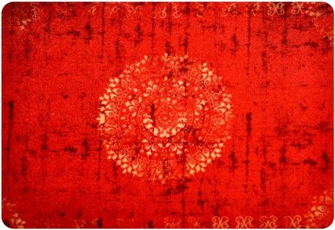 Bodenschutzmatte, Fussmatte, Eingangsmatte, Schmutzfangmatte 50 x 70 cm