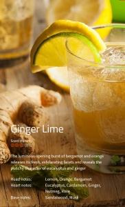 Ginger Lime Duftmarketing Aromaöl 200 ml