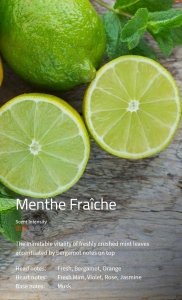 Menthe Fraîche Duftmarketing Aromaöl 200 ml