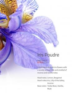 Iris Poudre Ambiance Aromaöle 200 ml-floral - Blumen- Blütendüfte