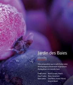 Jardin des Baies **** Duftmarketing  Diese Komposition eröffnet mit einer fruchtigen Note, welche in ein blumiges Herz mit Geranien übergeht.
